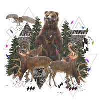 YOUNG SPIRITS IN THE WOODS Art Print Promoters