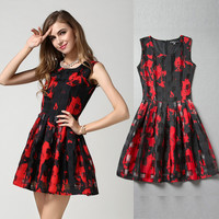 Black and Red Sleeveless Skater Dress