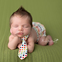 Scotty Polka Dot Newborn Photography Prop Diaper Cover 0 - 3 Months - Baby Boy Props, Newborn Props, Photography Props, Bloomer, Pants
