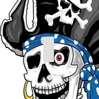 Skull Pirate Decorative Switchplate Cover