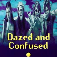 Dazed And Confused Poster 24x36