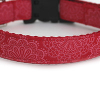 Sweet Doilies Dog Collar