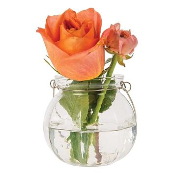 Vivian Clear Hanging Mason Jar Candle Holder and Vase