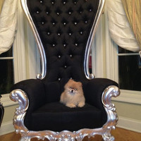 Fabulous and Baroque — Absolom Roche Chair - Silver Leaf - Client Photo