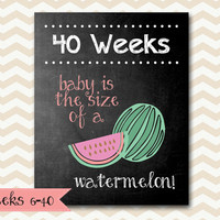 Weekly Pregnancy Chalkboard Baby is the Size of a.... Every Week / 8x10 Digital Printable Maternity Photo Prop / Set of 35