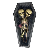 Conjoined Siamese Twin Skeleton in Coffin