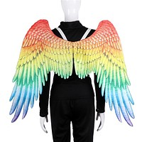 LGBT Pride Angel Rainbow Wings