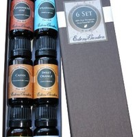HOLIDAY Essential Oil 100% Pure Therapeutic Grade Aromatherapy Sampler Set- 6/ 10 ml of Cinnamon Leaf, Hope, Pine, Spearmint, Vanilla and White Fir by Edens Garden