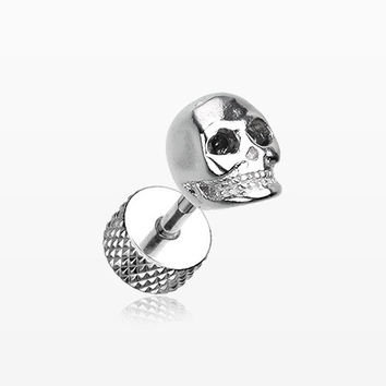 A Pair of Death Skull Steel Fake Plug Earring