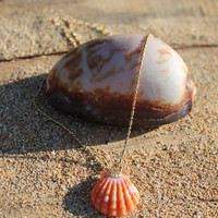 Handmade Maui Sunrise Shell Necklace