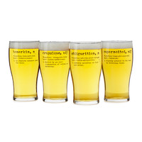 Life by Definition Beer Glasses - Set of 4 | geeky glassware