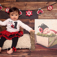 My 1st Birthday Lady Bug Applique Bodysuit with Name-Personalized 1st Birthday Set-Love Bug Birthday Outfit-Cake Smash