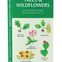 California Trees & Wildflowers: A Folding Pocket Guide to Familiar Plants (Pocket Naturalist Guide)