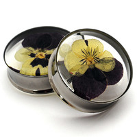 Embedded Pansy Flower Resin Plugs
