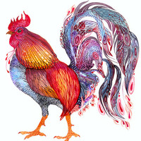 Feather Jewelry // SALE 1+1 // Buy one get one FREE, Rooster bird watercolor art print, size 10x8 (No. 34)