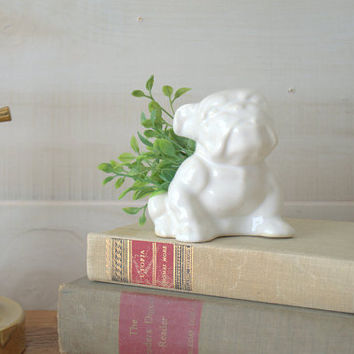 Ceramic Bulldog Succulent Planters, White Ceramic Animal Planter, Small Desktop Air Fern Planter