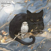 5D Diamond Painting Small Owl and a Black Cat Kit