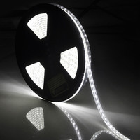 33ft SMD3528 Waterproof 600LEDs Strip Light Cool White