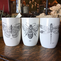 Insect Tumblers