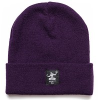 Spirit of Detroit Beanie - Purple