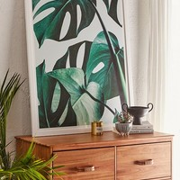 83 Oranges Monstera Art Print | Urban Outfitters