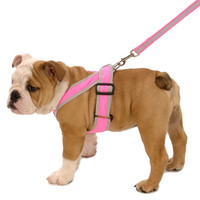 Precision-Fit Nylon Dog Harness - Hot Pink at BaxterBoo