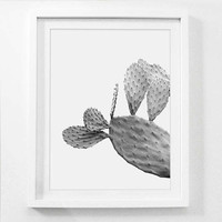 Cactus Photography, Cactus Print, Desert Art, Desert Photography, Black and White, Botanical Art, Garden Wall Art, Garden Photography