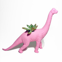 Up-cycled Baby Pink Apatosaurus Dinosaur Planter - With Succulent Plant