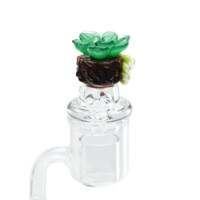 Empire Glassworks Succulents Carb  Cap