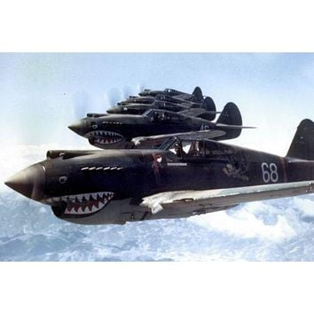 Flying Tigers 1942 Aircraft poster Metal Sign Wall Art 8in x 12in