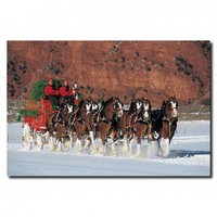 Lil' Rider Clydesdales in Snow with Carriage and Christmas Tree Canvas Art - AB263-C1624GG - All Wall Art - Wall Art & Coverings - Decor