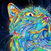 PAINTING ILLUSTRATION TRIPPY CAT SPACE WHISKERS COLOURFUL SURREAL 18X24'' POSTER ART PRINT LV10559