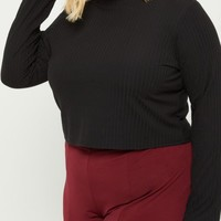 Plus Black Rib Knit Mock Neck Crop Top