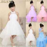 2015 NEW Princess Baby Girls Queen Party Dresses Children's Full Dress Kids Toddler Clothing Evening Gown = 1932726084