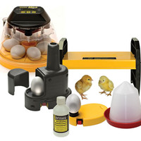Brinsea Incubator Mini Advance Starter Pack N610 | Incubation and Rearing | Chicken Keeping Equipment | Omlet
