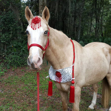 Red Tassels Equine Necklace - for Holiday Horse or Pony - Red Silver Sequins Horse Breast Collar - Christmas Tack, Equine Costume