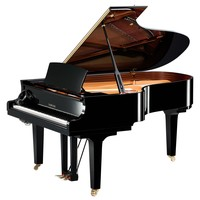 "C1M 161cm (5'3"") Conservatoire Series Grand Piano 