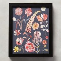 Michelle Morin Flora Spectrum Wall Art in Carbon Size: One Size Decor