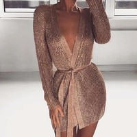 Vintage Shimmer Fitted Robe Dress