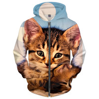 Cats r Awesome