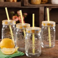 The Pioneer Woman Simple Homemade Goodness 16-Ounce Mason Jars with Lid and Straw, Set of 4 - Walmart.com