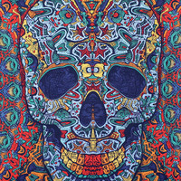 """Grateful Dead Tapestry - 60"""" by 90"""""""