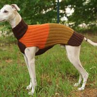 Whippet Sweater (brown, orange, curry)
