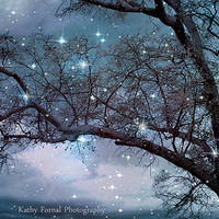 Nature Photography, Surreal Blue Starry Trees Nature, Slate Blue Spooky Tree, Nature Bokeh Blue Trees, Fantasy Surreal Blue Nature Photo