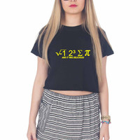 I hate Some Pi And It Was Delicious For Womens Crop Shirt **