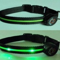 Dog Collar with Green LED Lights, Multi-Function, Small