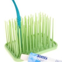 Grass Toothbrush Holder