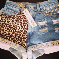 NEW LEOPARD SHORTS