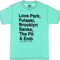 DGK Plazas Tee Medium mint