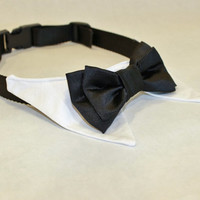 RockinDogs Shirt Collar and Satin Double Bow Tie Dog Collar